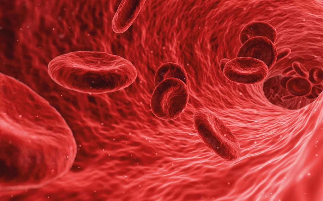 Kök Hücre Bilinenden Çok Daha Fazlası